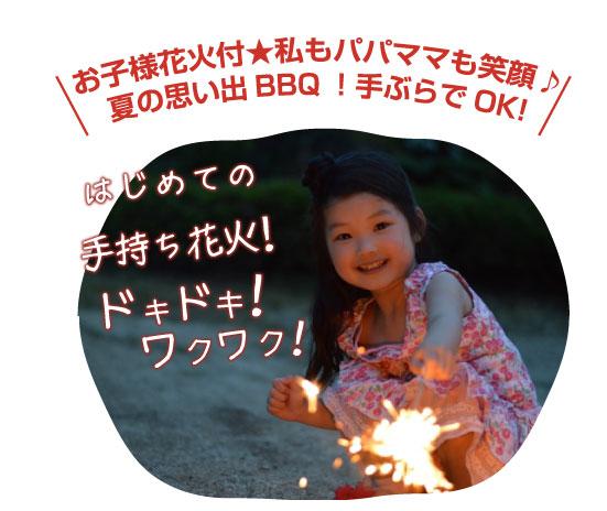 お子様花火付き★私もパパママも笑顔♪夏の思い出BBQ!手ぶらでOK!